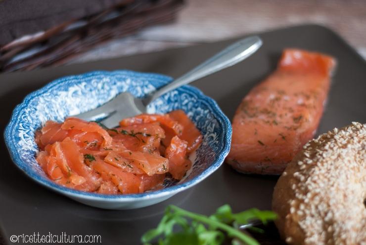 gravlax-salmone