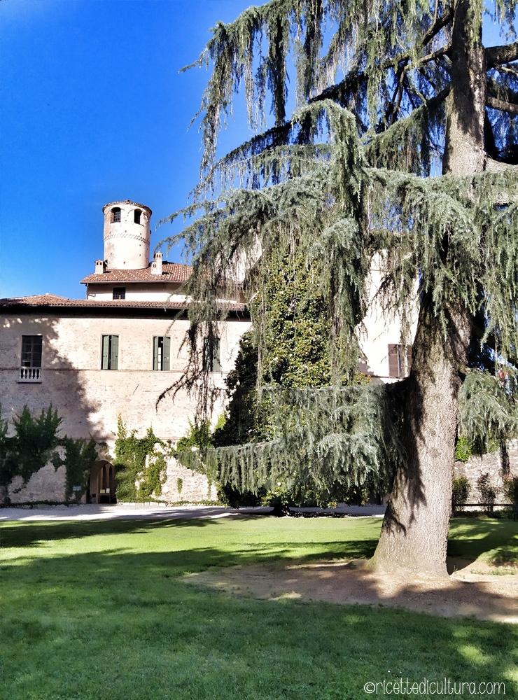 Castello-della-Manta